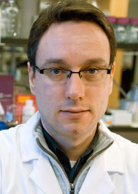 Alexander Stegh, PhD